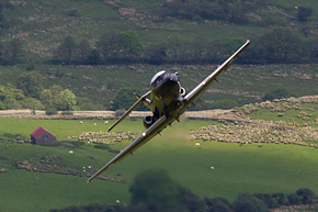 RAF Dominie T1 line up photo 2