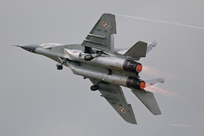 Polish MiG 29UB 15 Photo 6